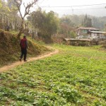 Walking through Martam village in Hee Bermiok - Sikkim