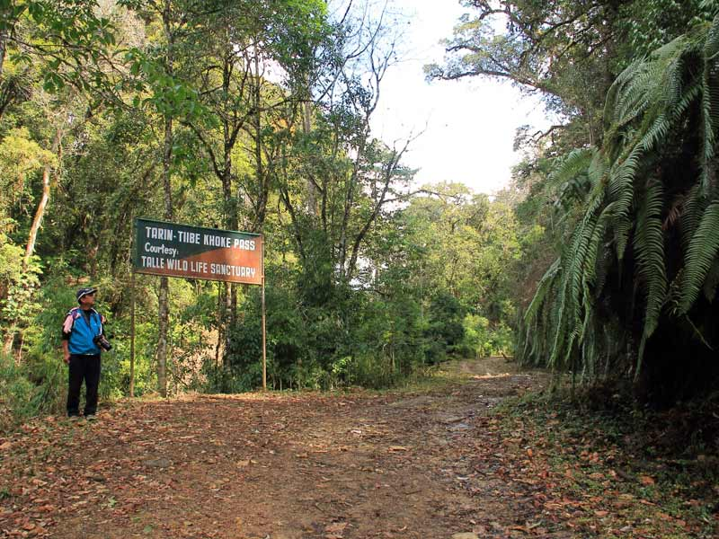 Walk to Pange on Talle valley trek